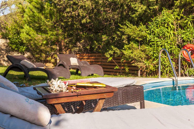 βίλα με ιδιωτική πισίνα προς ενοικίαση,  λεπτομέρεια της πισίνας