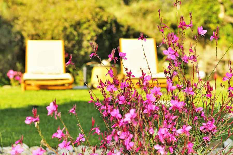 private pool villa to rent, gorgeous spacious garden